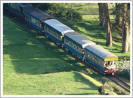 Hill Train Tour Ooty